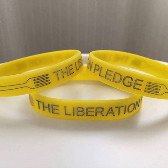 Liberation Pledge Wristband