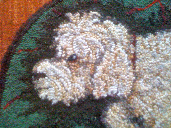 Buster. Close-up of rug by Kathleen Knisely