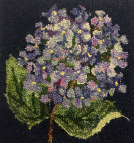 Hydrangea in Bloom Shading Workshop