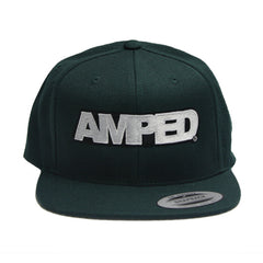 Power Flat Snapback in Spruce