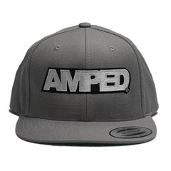 Power Snapback in Silver