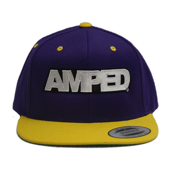 Power Flat Snapback in Purple/Gold