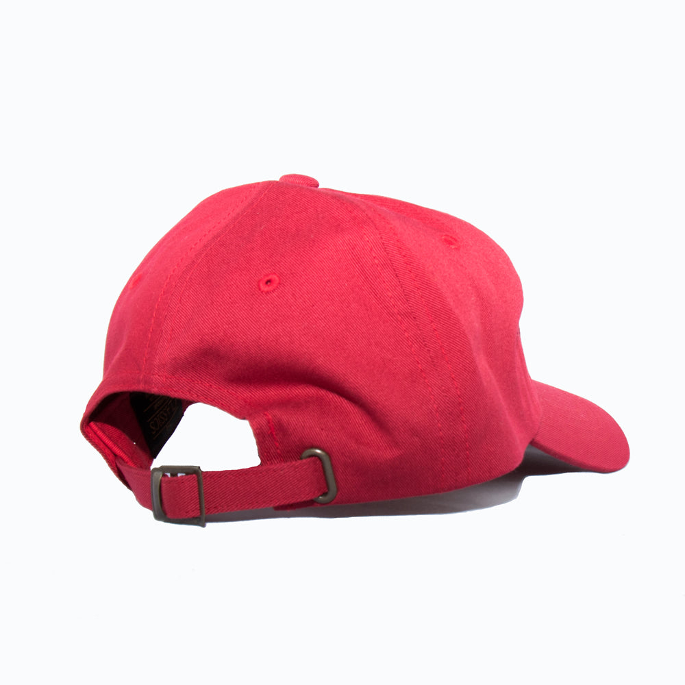 Power Strapback Hat in Cranberry