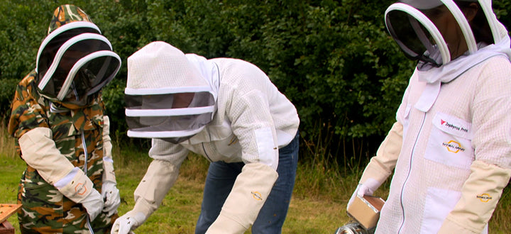 beekeepeing suit in apiary