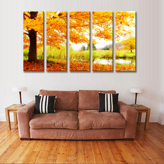 Maple Tree Fall Landscape