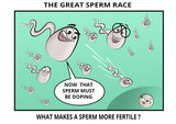 what-makes-sperm-more-fertile