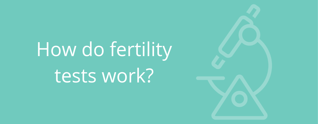 How do fertility tests work?