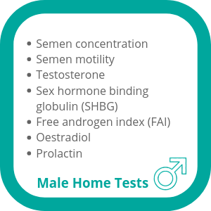 fertility tests for men