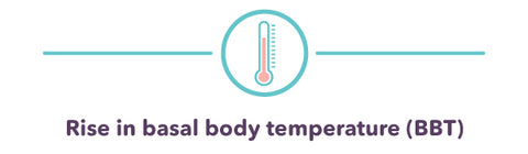 Rise in basal body temperature