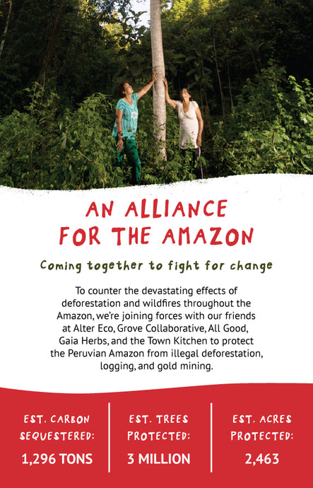 AN ALLIANCE FOR THE AMAZON: JOINING TOGETHER TO FIGHT FOR CHANGE SEPTEMBER 06, 2019 AN ECOSYSTEM IN NEED