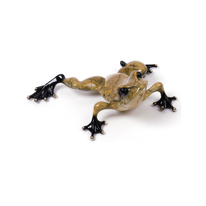Toady bronze frog by Tim Cotterill