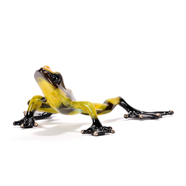 Zorro bronze frog by Tim Cotterill