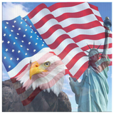 EAGLE, LADY LIBERTY & FLAG - CANVAS ART