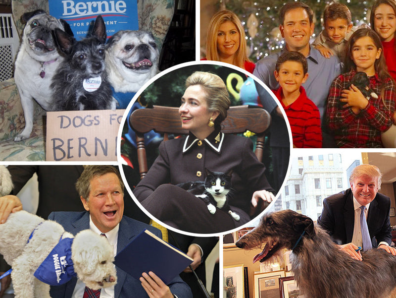 Where Do Presidential Candidates Stand on Animal Welfare Issues?