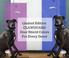Stylish Ways To Protect Your Home From Pet Damage (Limited Edition Colors!)