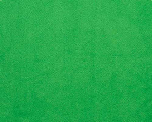 Kelly Green Minky Solid