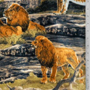 Lions in Wilderness Fleece Fabric