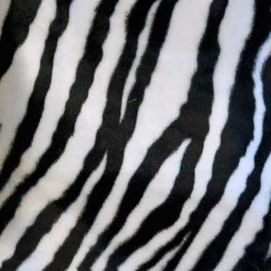 Medium Black and White Zebra Velboa