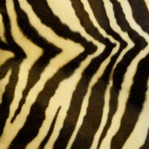 Medium Beige Zebra Velboa