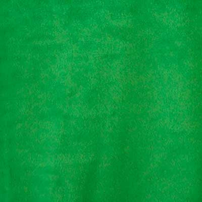 Kelly Green Solid Fleece