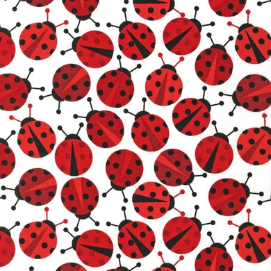 Slicker - Kona Laminated Cotton Fabric/Lady Bug