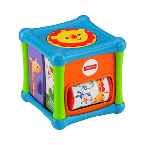 Fisher Price Growing Baby® Animal Activity Cube BFH80
