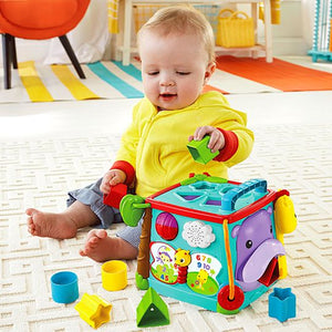Fisher Price Play & Learn Activity Cube CMY28