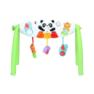 Fisher-Price OPP Gym Y6588
