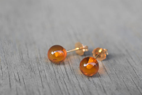 Classic 14K Gold Fill Baltic Amber Studs
