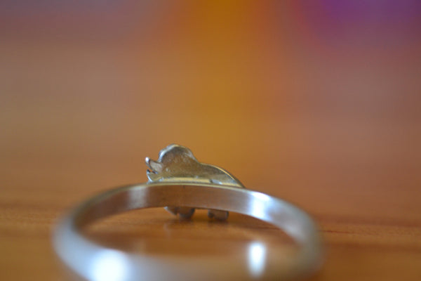 2mm Wide Sterling Silver Band With Triceratops Charm