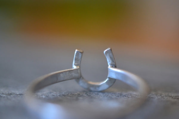 Sterling Silver Horseshoe Ring With 2mm Band