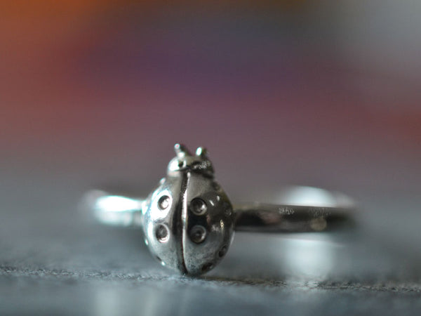 Personalised Sterling Silver Ladybird Charm Ring