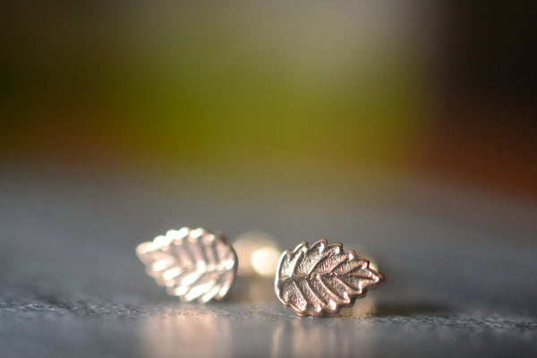 Dainty Little Leaf Earrings in 14K Yellow Gold