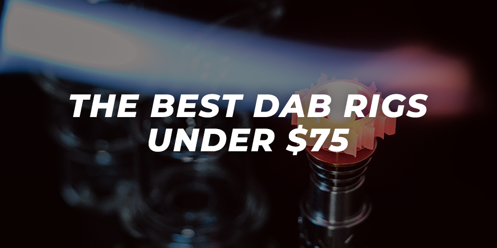 The Best dab rigs under $75