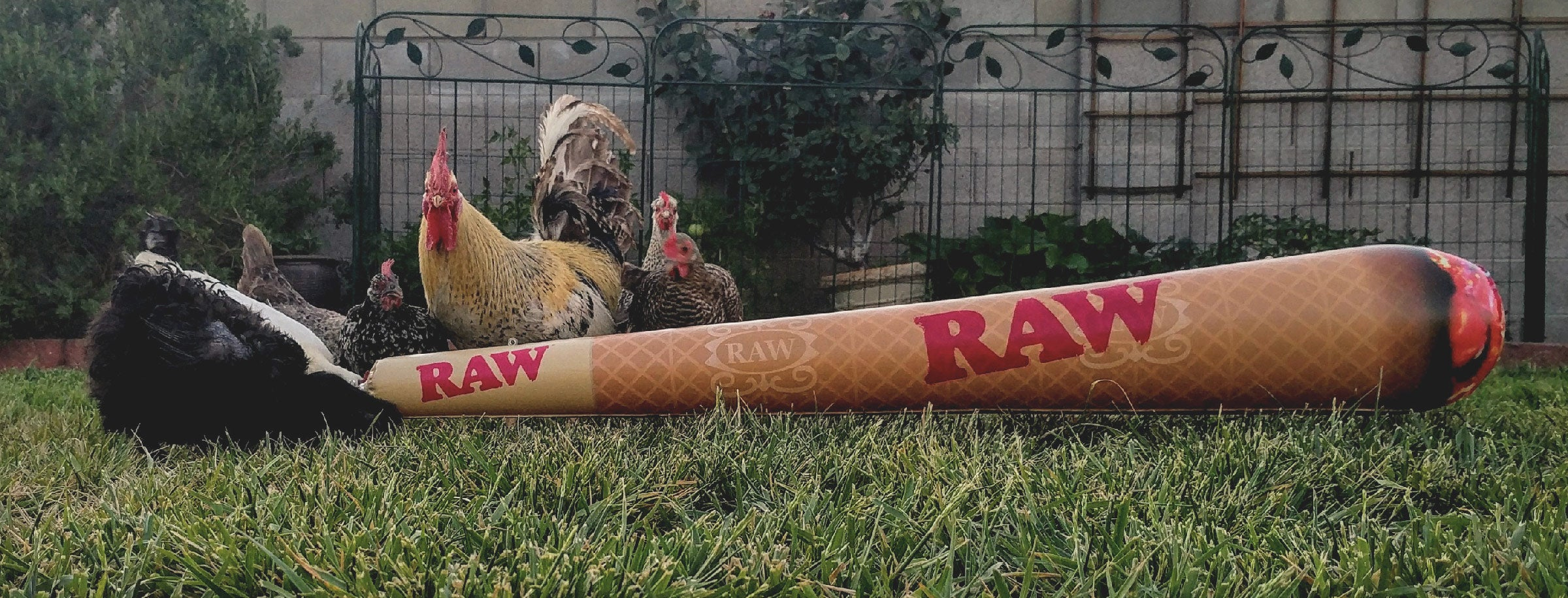 RAW Cone inflatable - 6 ft