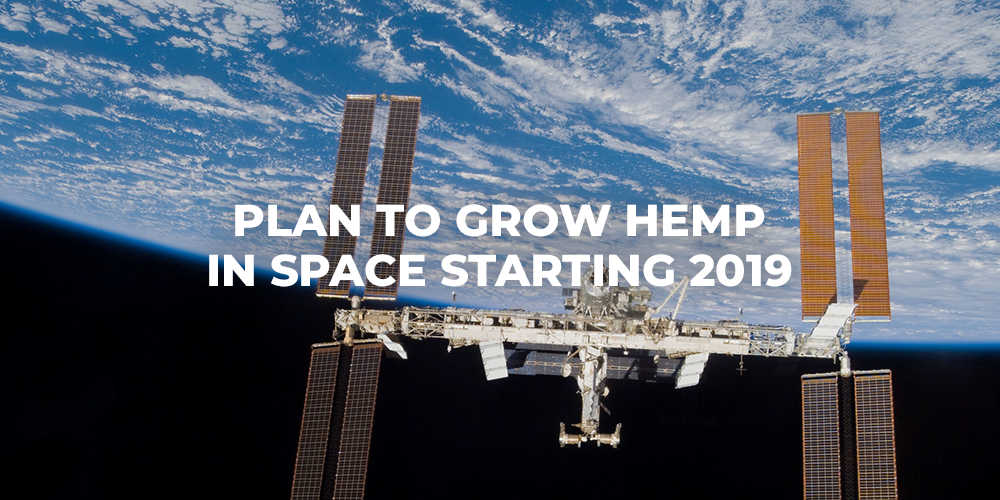 growing hemp in space
