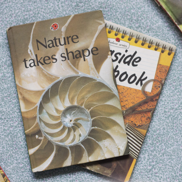 Vintage Ladybird Book, Nature Takes Shape