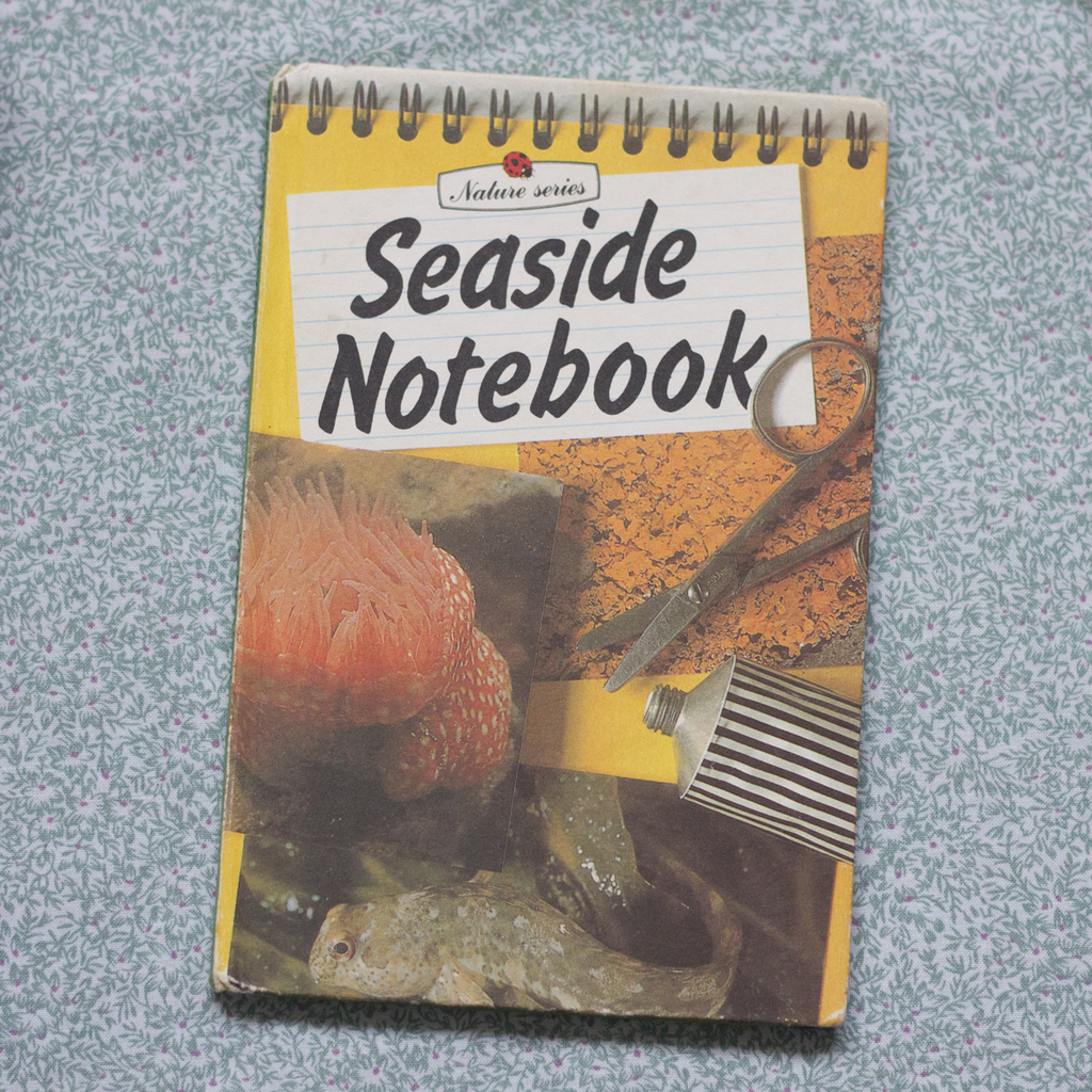 Vintage Ladybird Book, Seaside Notebook