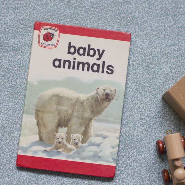 Vintage Ladybird Book, Baby Animals
