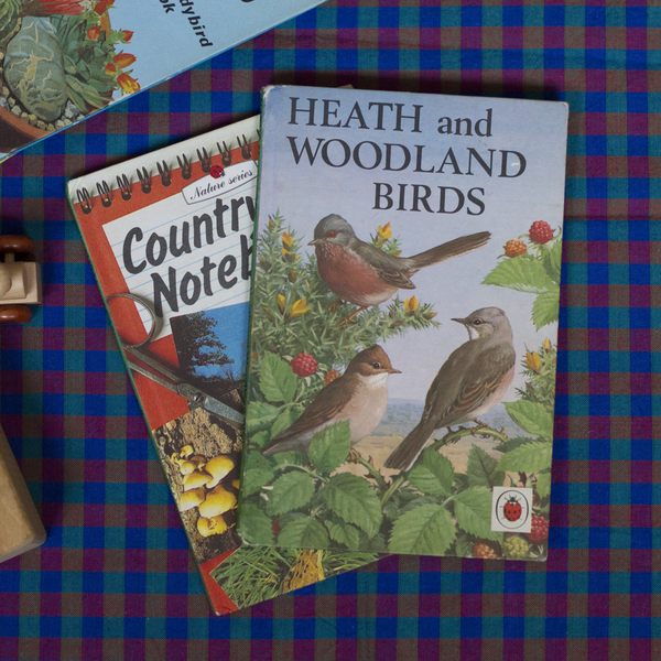 Vintage Ladybird Book, Health & Woodland Birds