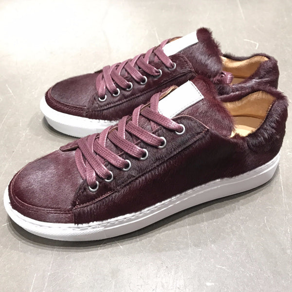 "Sneakers JMLEGAZEL ""Poney"" - Wine - Men & Women"