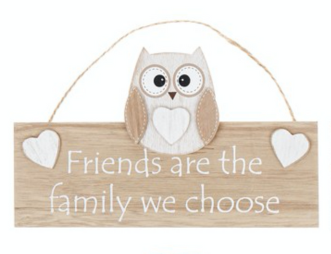 Woody Owl, friends are the family we choose, hanging sign