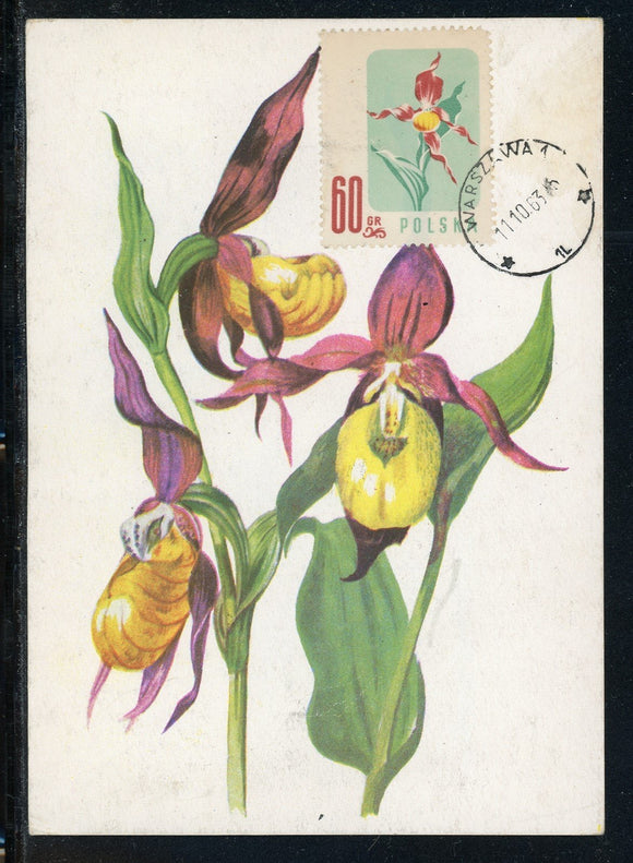 Poland Scott #785 POSTCARD Plants FLORA UNADDRESSED $$