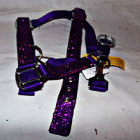 Pony Halter with  Purple Glitter