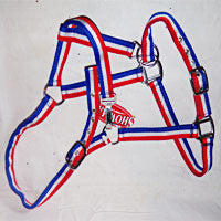 Halter in Red, White & Blue - EquineGiftBoutique