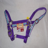 Halter with Glitter and Butterflies on nose, cheeks crown - EquineGiftBoutique