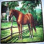 Horse and  Cat Floor Mat