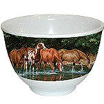 Small Melamine Bowl with reflections image in outside - EquineGiftBoutique