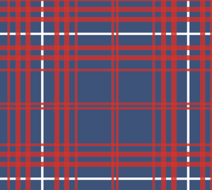Yacht Club Shift - Navy/Red Winter Plaid