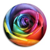 Rainbow Rose Button Badge